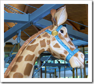 Carosel giraffe