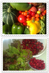 Produce from Lary garden