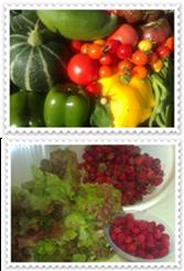 Produce from Lary garden