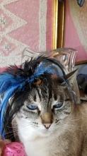 Lolitta looking glamorous
