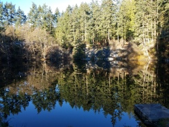 Reflection at Quarry Park in Deception Pass